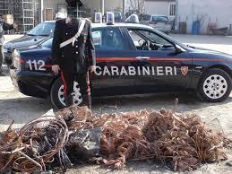 Maxi furto a Buccino