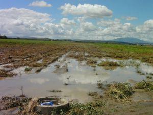Cia basilicata sulle continue emergenze maltempo per for Consolidare un terreno