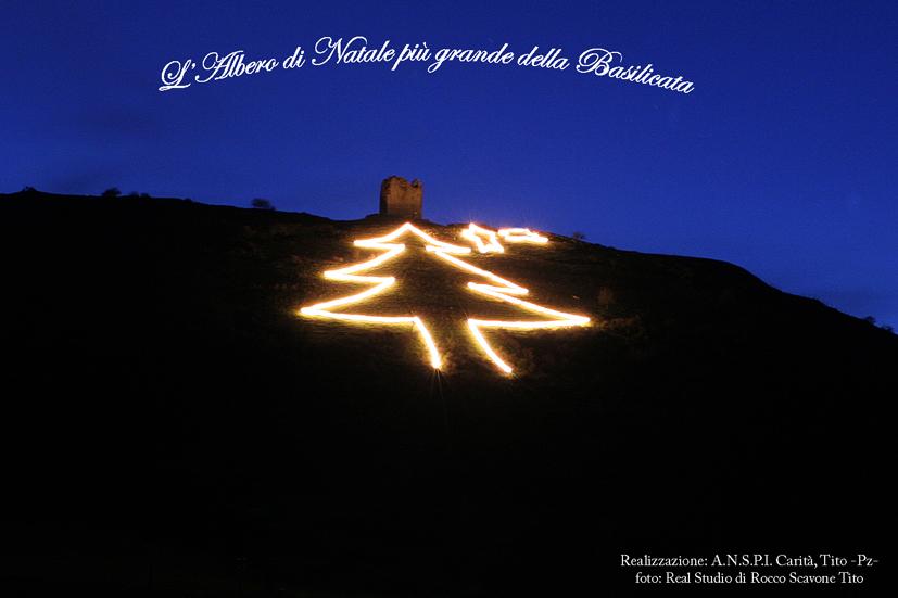 Albero di Natale 2005