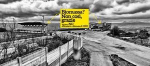 Qui dovrebbe sorgere l'impianto a biomasse, a Tito