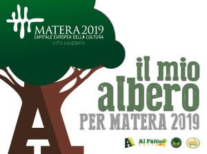 Il-mio-albero-per-matera-2019-02