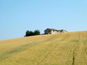 Azienda-agricola