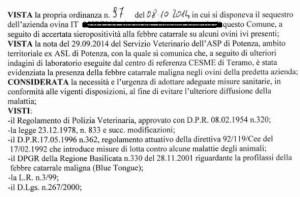 L'ordinanza del sindaco di Muro Lucano