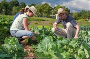 Giovani_agricoltori1