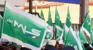 bandiera-fials
