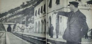 treno8017